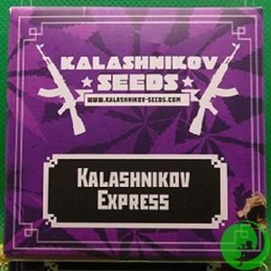 Семена конопли Kalashnikov Express