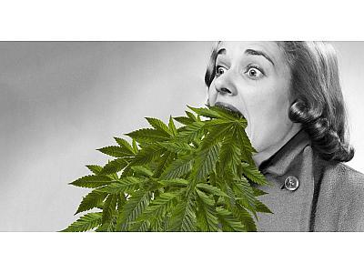 Аллергия на каннабис? Причины и признаки