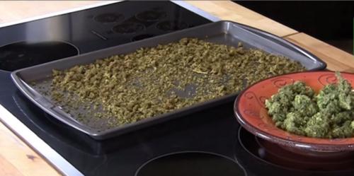 Приготовить масло конопли гидропоника семена перца